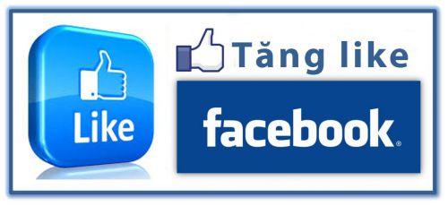 Hướng dẫn tăng like Fanpage Facebook nhanh chóng